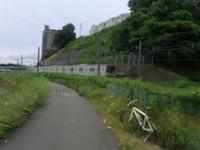 photo 03