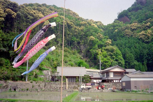日本を感じる鯉のぼりのある風景