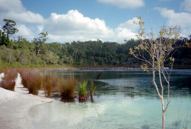 フレーザー島ベイシン湖
