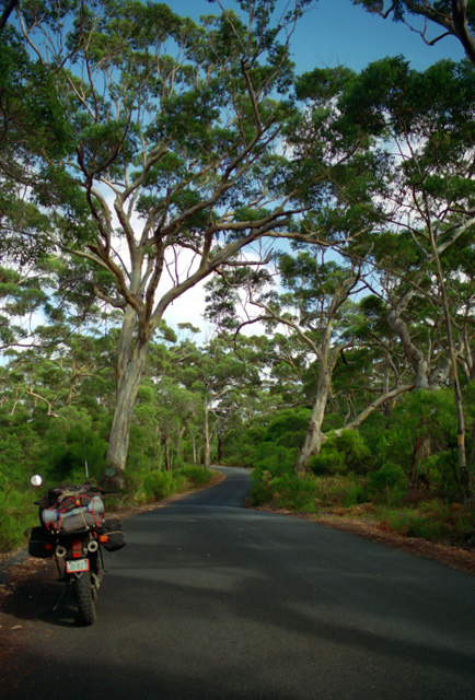オーストラリア南西部の道