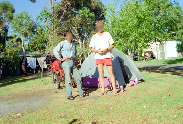 キバハリアリを見たキャンプ場
