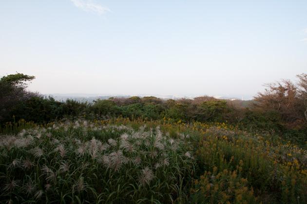 二子山山頂からの景色