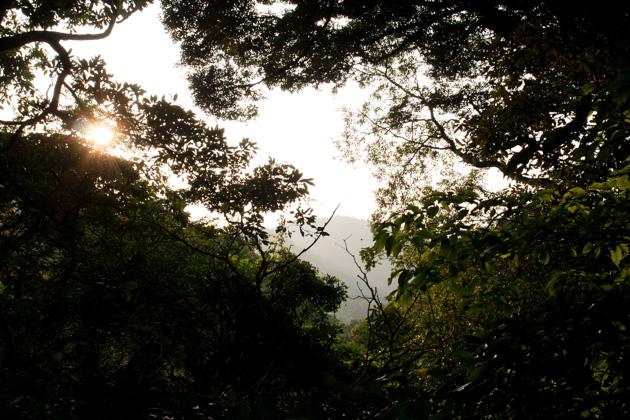二子山への道