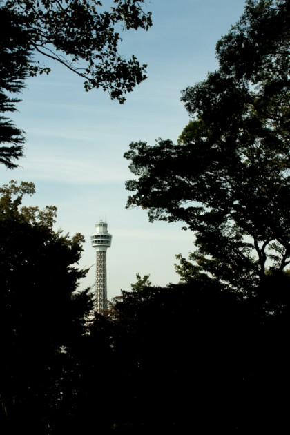 フランス山公園から見るマリンタワー