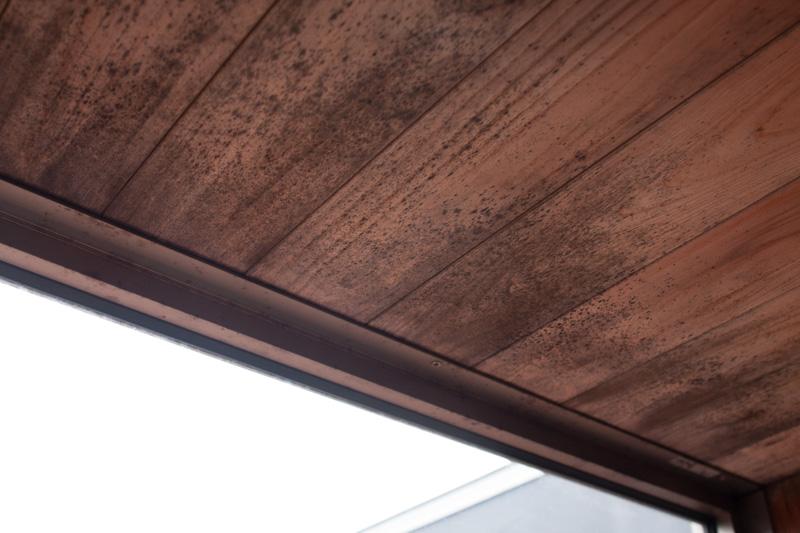 カビの生えたお風呂場のヒノキ板