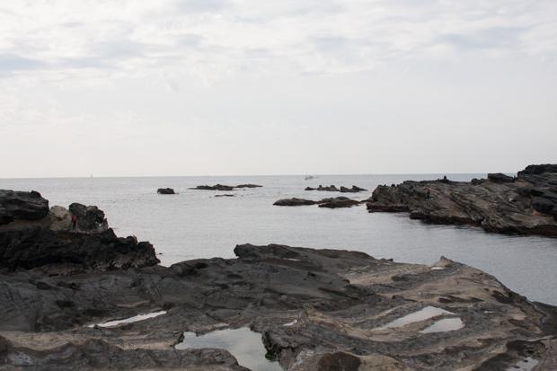 城ヶ島の磯