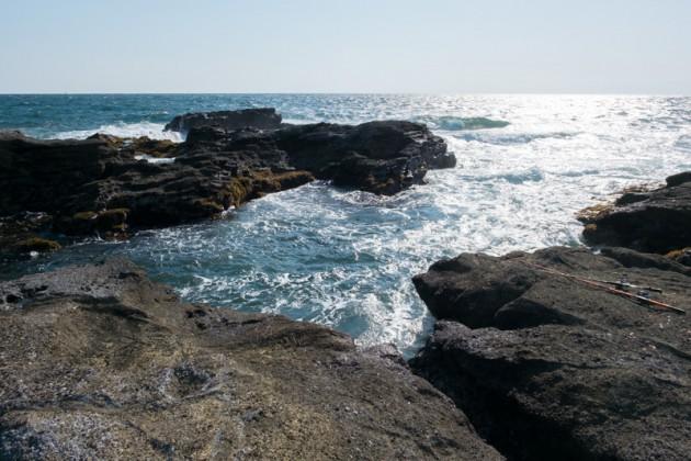 三浦半島の地磯