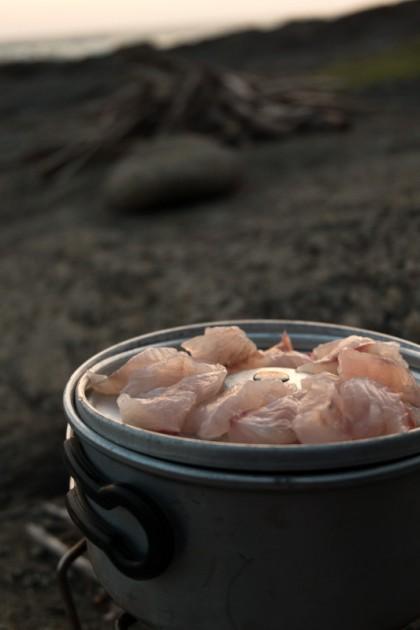 キャンプ地でのメジナのお刺身