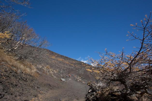 宝永火口への登山道