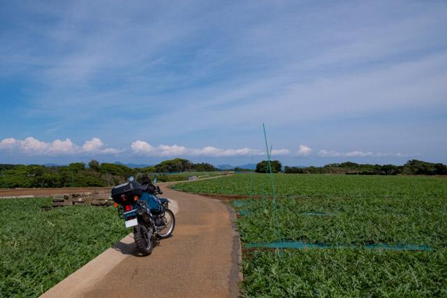 毘沙門の農道