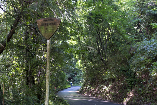 林道・雲河原線と木製標識