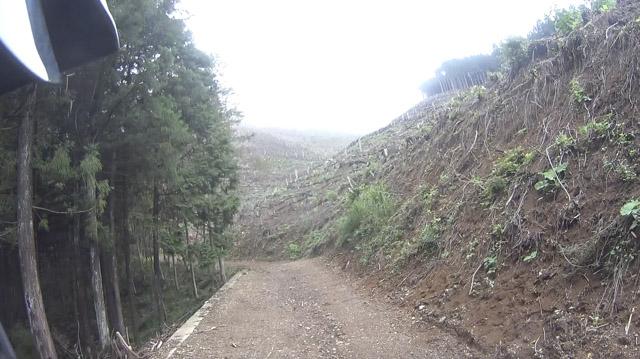 林道・剣ヶ峰七重線の伐採区間