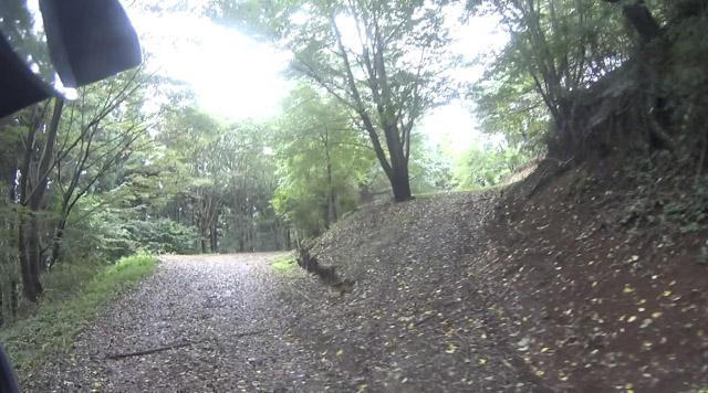 林道・剣ヶ峰七重線の森の広場