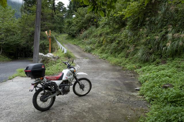 林道・井戸入線の入口