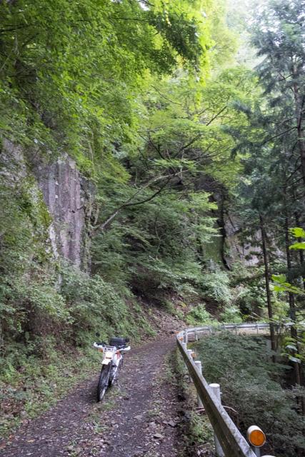林道・井戸入線 岩のある場所