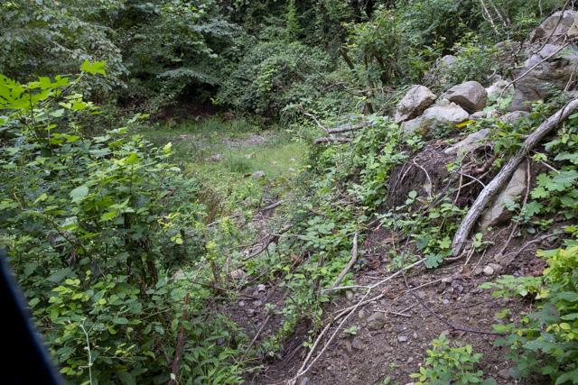 林道・井戸入線の崖崩れ箇所