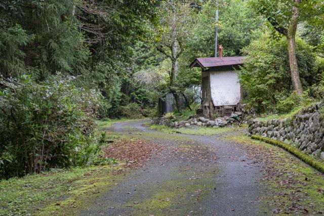 林道・湯ノ花線の入口付近