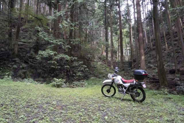 林道・湯ノ花線の終点
