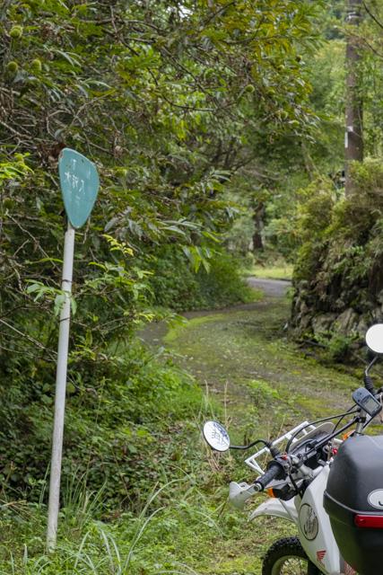林道・大沢入線の入口