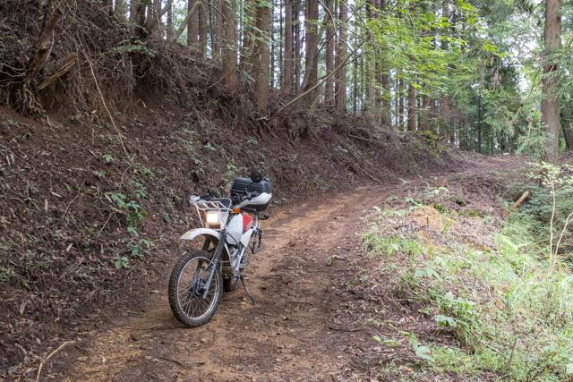 林道・常磐線の終点の先