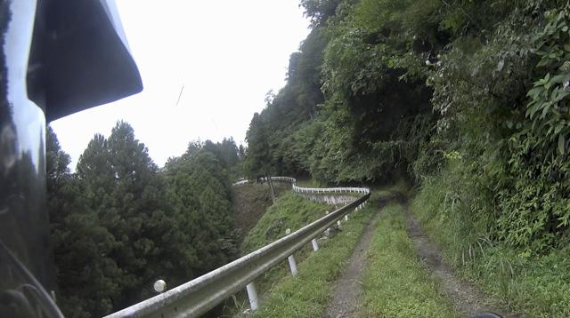 林道・井戸入線 谷沿いに道が続く