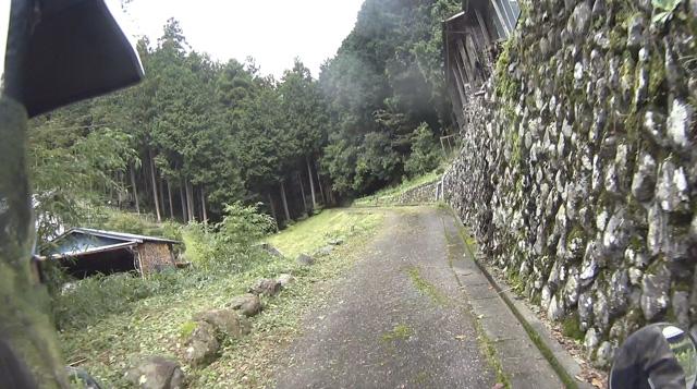 林道・桐の木平線の舗装路区間