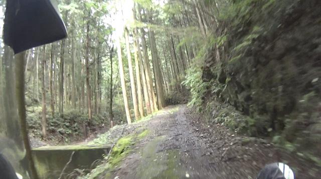 林道・桐の木平線のダート区間