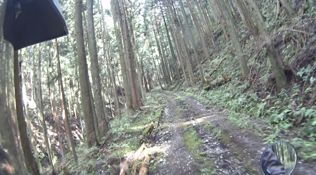 林道・常林入線