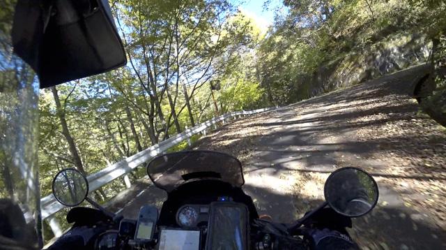 横尾山林道と高須林道の分岐