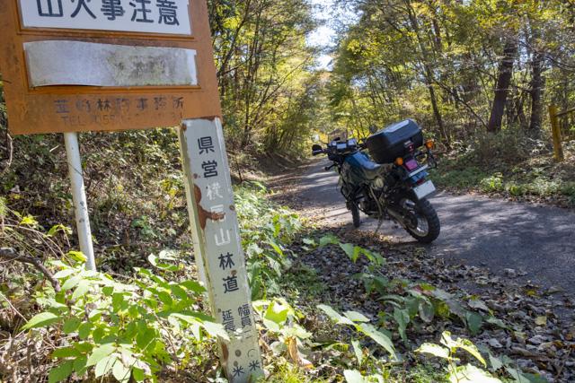 横尾山林道の杭