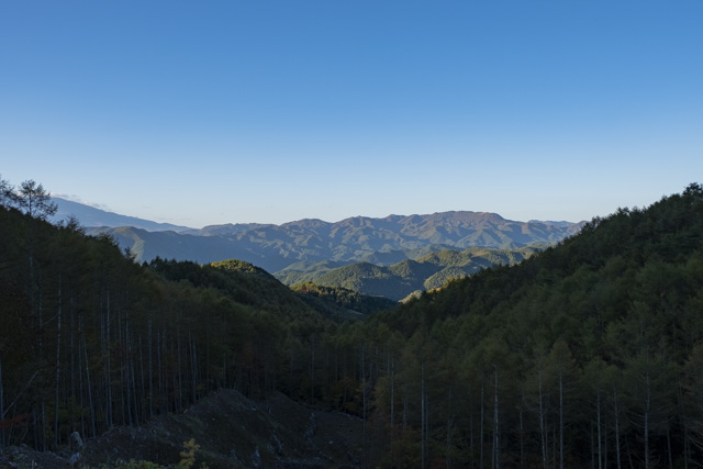 林道・金ヶ岳線