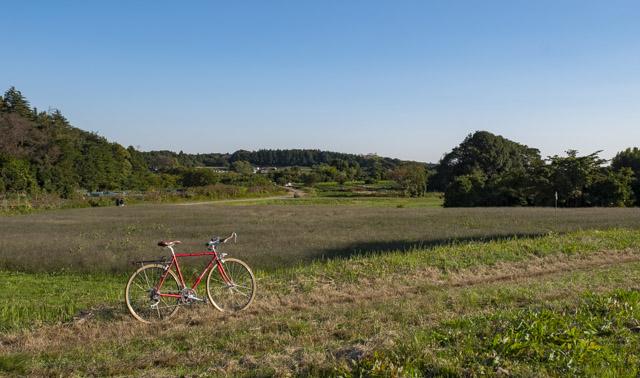横浜・瀬谷の田園風景