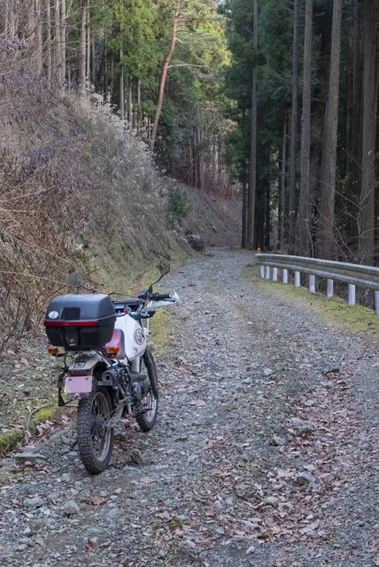 林道・道坂菜畑線