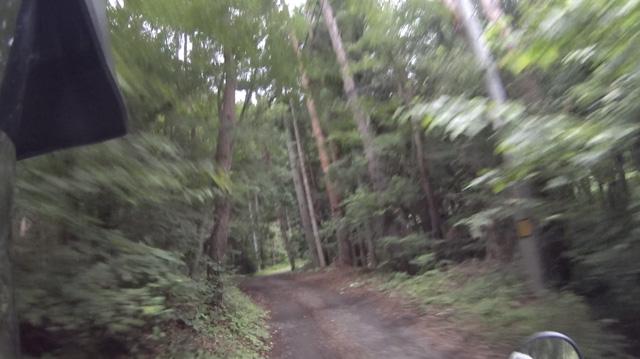 山梨【林道・盛里線】