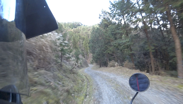 道志の林道・道坂菜畑線