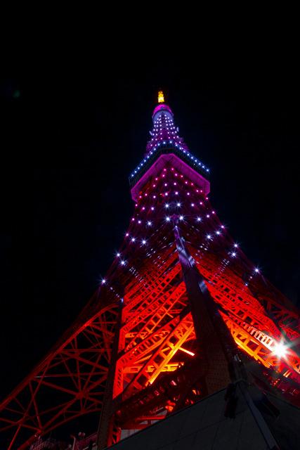 東京タワー・インフィニティダイヤモンドヴェール・2月紅梅色