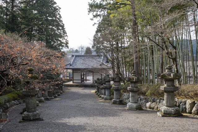 能仁寺の石灯籠の参道
