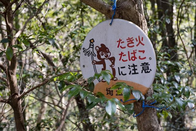 秩父御嶽神社・東郷公園のまといリス看板