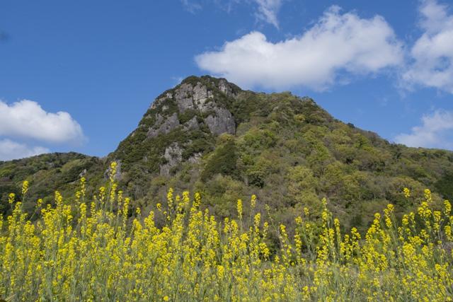 伊豆の国市・城山