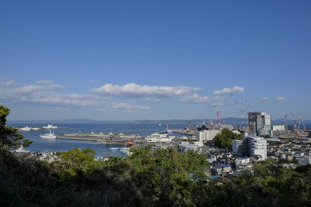 くりはま花の国から久里浜港を眺める
