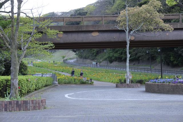 くりはま花の国入口付近