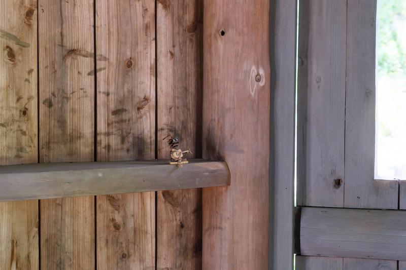 あけぼの子どもの森公園・とんがり帽子の青い家