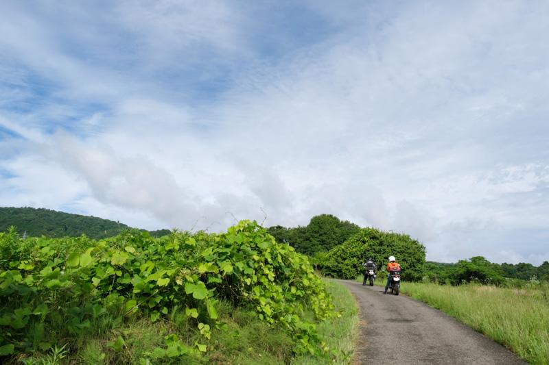 林道荒谷線付近の農道
