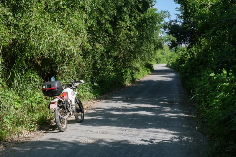中津川沿いの砂利道