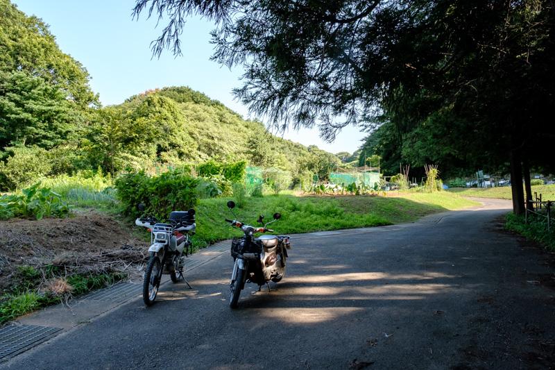 台村町の谷戸