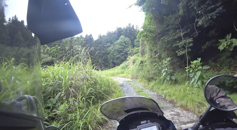 林道 根際線の舗装区間