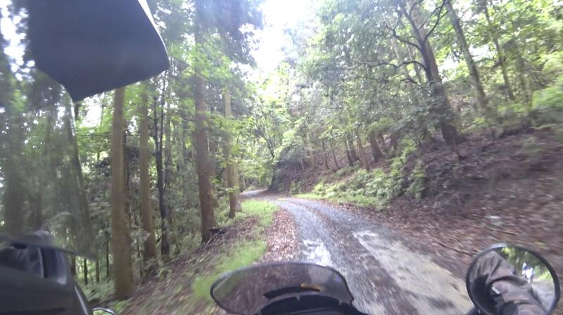 林道 根際線のダート区間スタート