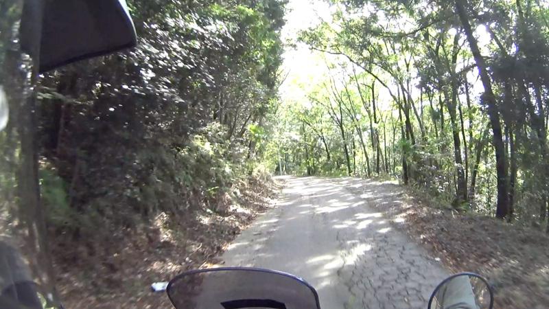 林道 栢ヶ舞線の舗装路区間