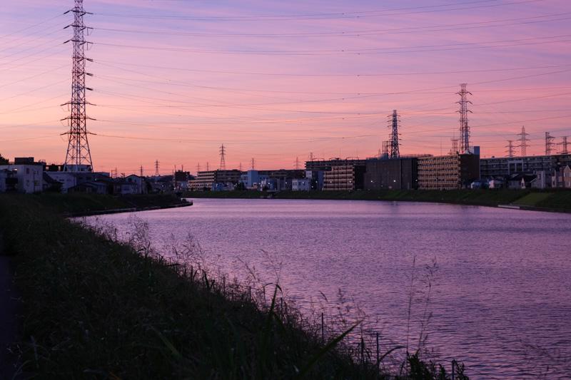 鶴見川の夕景