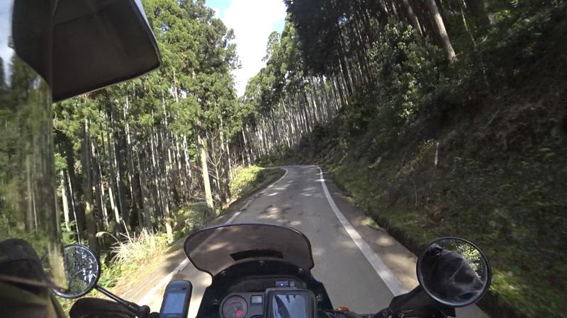 静岡・伊豆 舟山林道